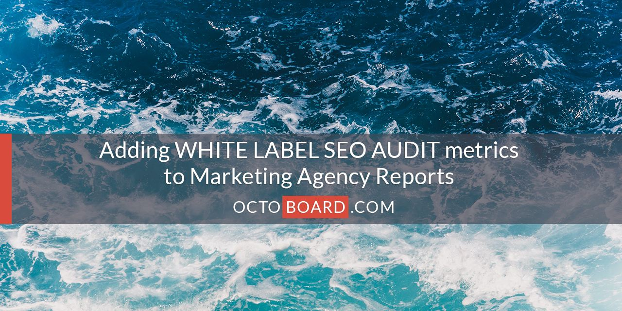 White Label SEO Audits for client reports